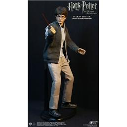 Favourite Movie Action Figur Harry Potter (Teenage Version)