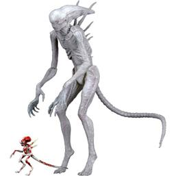 Covenant Neomorph Alien Action Figur