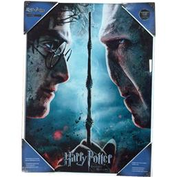 Harry Potter: Harry og Voldemort Indrammet Plakat