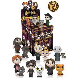 Harry Potter: Harry Potter Mystery Minis Vinyl Figur (Series 1)