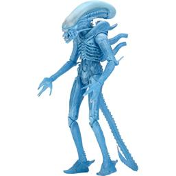 Warrior Alien (Kenner) Action Figur