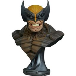 X-Men: Marvel Comics Bust 1/1 Wolverine 69 cm