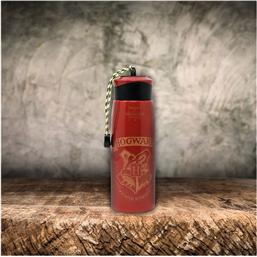 Harry Potter: Harry Potter Water Bottle Hogwarts