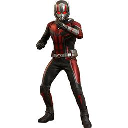 Marvel: Ant-Man & The Wasp Movie Masterpiece Action Figure 1/6 Ant-Man 30 cm