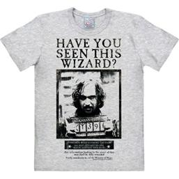 Harry Potter Easy Fit T-Shirt Have You Seen