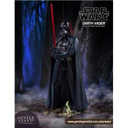 Star Wars: Star Wars Collectors Gallery Statue 1/8 Darth Vader 23 cm