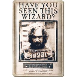 Harry Potter: Have You Seen This Wizard 20 x 30 cm