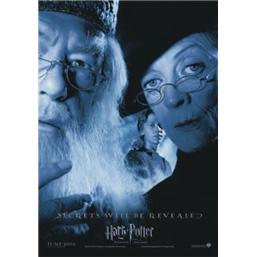 Harry Potter: Secrets will be Revealed Plakat