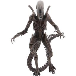 Warrior Alien (Alien Resurrection)