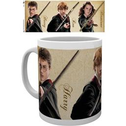 Harry Potter: Wands Krus