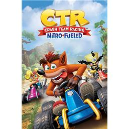 Crash Team Racing Nitro Race Plakat