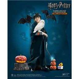 Harry Potter: Harry Potter (Child) Halloween My Favourite Movie Action Figure 1/6