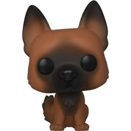 Dog POP! Television Vinyl Figur (#891)