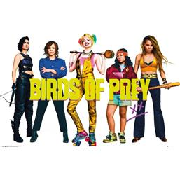 Birds of Prey Group Plakat