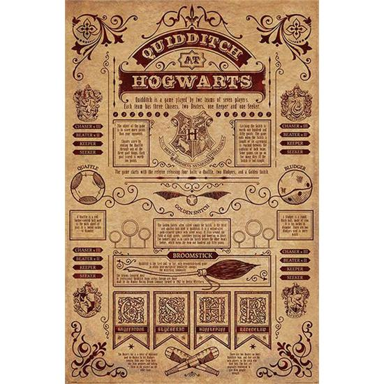 Harry Potter: Quidditch Rules Plakat